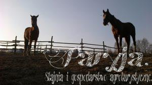 tn_PicsArt_1399569331917